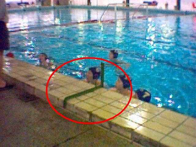saini milano corsi di nuoto arezzo - photo#10